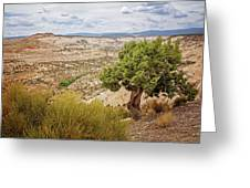 Rugged West Greeting Card