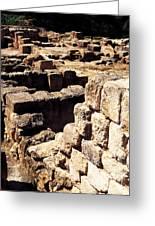 Ruins Of Zippori Greeting Card