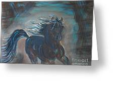 Run Horse Run Greeting Card