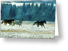 Run With The Wind Greeting Card