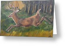 Running Buck Greeting Card