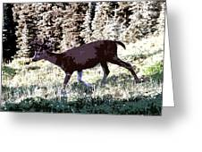 Running Deer Greeting Card