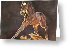 Running Foal Greeting Card