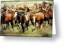 Running Free Horses IIi Greeting Card