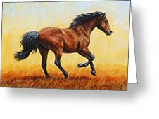 Running Horse - Evening Fire Greeting Card by Crista Forest