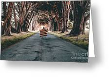 Running In The Forest Greeting Card