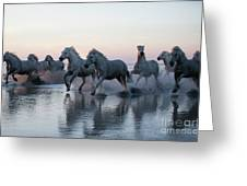Running Into The Sunset Greeting Card