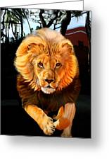 Running Lion Greeting Card