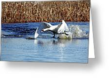 Running On Water I Greeting Card