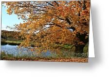 Rural Autumn Country Beauty Greeting Card