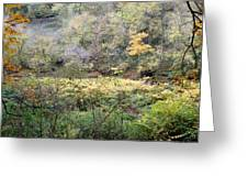 Rural Autumn West Virginia Landscape Greeting Card by Terry  Wiley