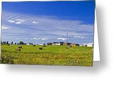 Rural Bay Du Vin Greeting Card