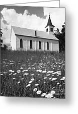 Rural Church In Field Of Daisies Greeting Card