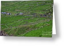 Rural Landscape On Dingle Peninsula Greeting Card