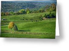 Rural Life Greeting Card