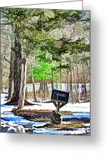 Rural Mailbox In The Snow 1 Greeting Card