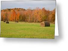 Rural Scene Greeting Card
