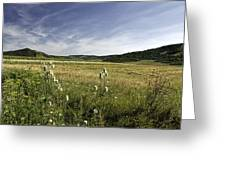 Rural Scenic Landscape Greeting Card