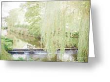 Rural Stream. Greeting Card