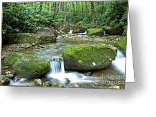 Rushing Mountain Stream Greeting Card