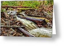 Rushing Stream Greeting Card