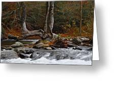 Rushing Water Greeting Card