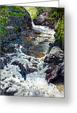 Rushing Waters Greeting Card by John Lautermilch
