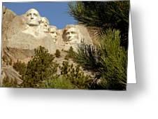 Rushmore Pine Needles Greeting Card