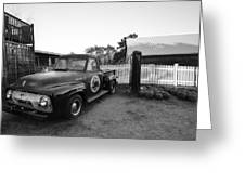 Russel Farms 1951 Ford F100 Black And White Greeting Card