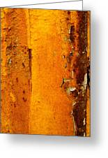 Rust Abstract 2 Greeting Card