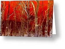 Rust Forest Greeting Card