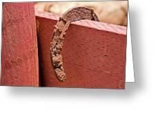 Rusted Horseshoe Greeting Card