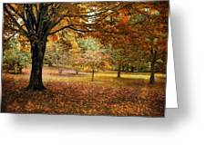 Rustic Autumn  Greeting Card