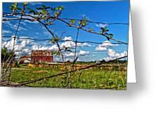 Rustic Frame  Greeting Card