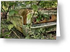 Rustic Rear Greeting Card