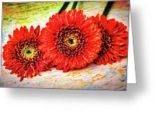 Rustic Red Dasies Greeting Card