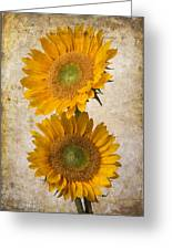Rustic Sunflowers Greeting Card
