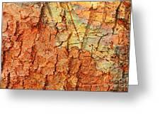 Rusty Bark Abstract Greeting Card