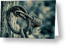 Rusty Lock And Chain Greeting Card