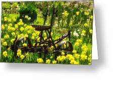 Rusty Plow In Daffodils  Greeting Card