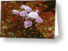 Rusty Romance In Pink Greeting Card by Ivana Westin