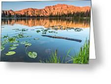 Ruth Lake Lilies Greeting Card