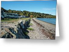 Rvs At The Beach Greeting Card