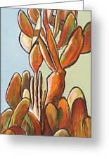 Sabar Cactus Greeting Card