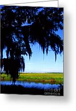 Sabine National Wildlife Refuge Along The Creole Nature Trail Greeting Card