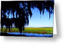Sabine National Wildlife Refuge Greeting Card
