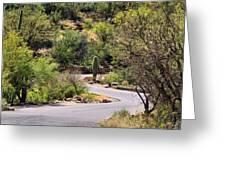 Sabino Canyon Road Greeting Card