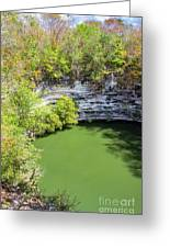 Sacred Cenote Vertical View Greeting Card