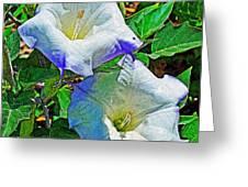 Sacred Datura Greeting Card