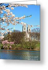 Sacred Heart And Branch Brook Cherry Blossoms  Greeting Card